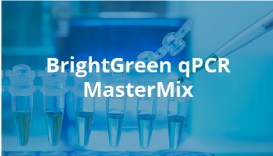 BrightGreen qPCR MasterMix