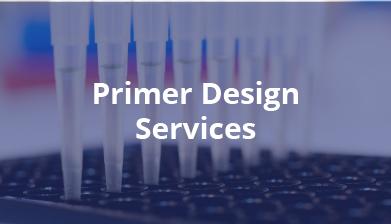 Primer Design Services