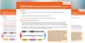 CRISPR Case Studies