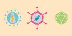 CRISPR Methods and Tools