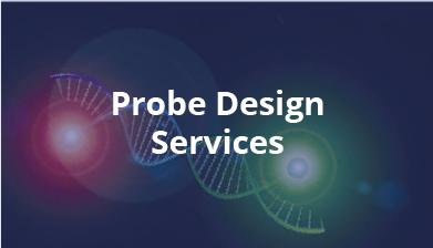 Probe Design Services
