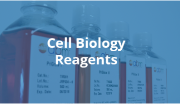 Cell Biology Reagents