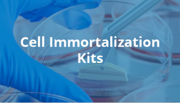 Cell Immortalization Kits