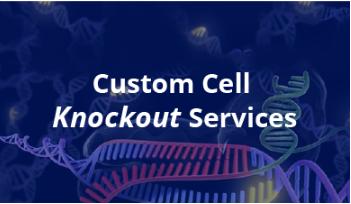 CRISPR Cell Line Services