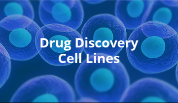 Drug Discovery Cell Lines
