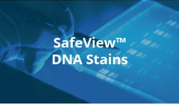 SafeViewTM DNA Stains